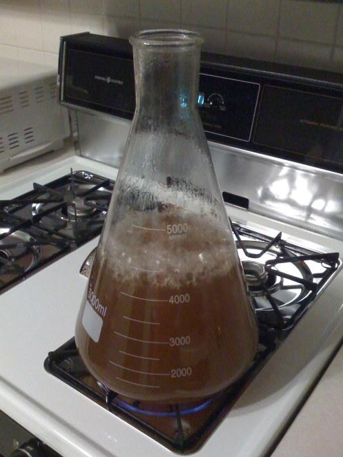 Boiling Starter